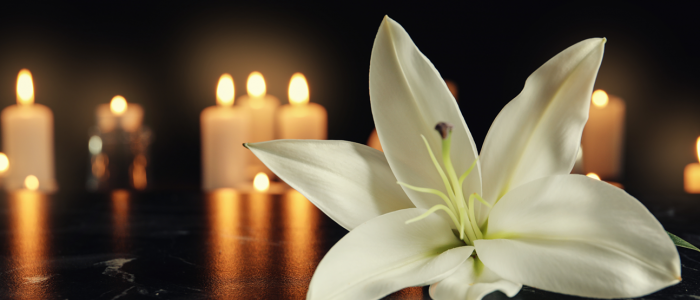 Lily flower and burning candles